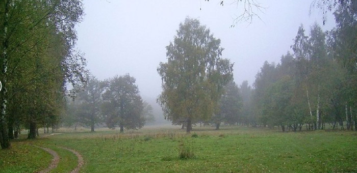 Парк рядом с ЖК Галактика Калуга